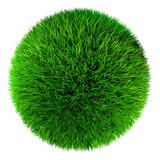 Green grass ball Royalty Free Stock Images