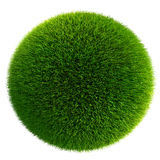 Green grass ball isolated on white Royalty Free Stock Photography