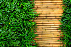 Green grass on bamboo Royalty Free Stock Photo