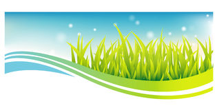 Green grass banner with blue sky Royalty Free Stock Photography