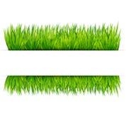 Green grass banner vector Stock Photo