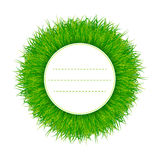 Green grass banner vector Royalty Free Stock Image
