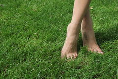 On the green grass barefoot girl. The girl is standing on tiptoes. She crossed legs. Bare feet girls close up. They were green lawn.  Feet in Focus Royalty Free Stock Photography