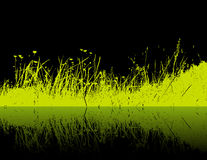 Green grass on black background. Vector Stock Photo
