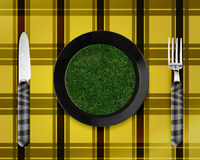 Green grass on black plate. With knife and fork Royalty Free Stock Photo