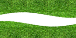 Green grass blank curve isolated Royalty Free Stock Image