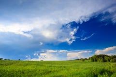 Green grass blue skies Royalty Free Stock Photos