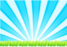 Green grass & blue sky Royalty Free Stock Photo