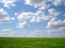 Green grass and blue sky. And horison Stock Photo