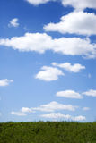 Green grass and blue sky. Whith clouds background stock photos