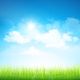 Green grass and blue sky. Natural background with green grass and blue sky with clouds. Vector Royalty Free Stock Image