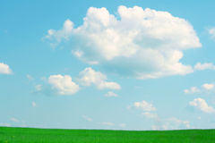 Green grass and blue sky. Green field,blue sky and white clouds Royalty Free Stock Photo