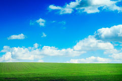 Green grass and blue sky . Stock Photos
