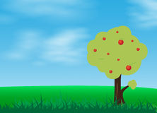 Green grass in  blue sky with apple tree cartoon  illustra Royalty Free Stock Image