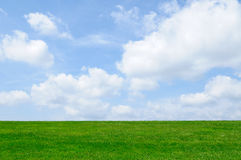 Green Grass, Blue Sky Background. Green grass, blue sky, white clouds background Royalty Free Stock Image