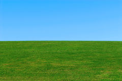 Green grass, blue sky background Royalty Free Stock Photo