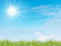 Green grass with blue sky Royalty Free Stock Photography