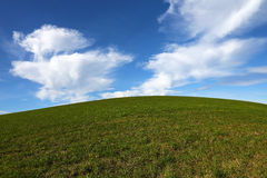 Green grass and blue sky background Stock Images
