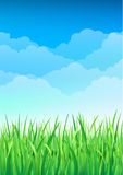 Green Grass and Blue Sky Background. Happy Summer Nature Illustration. Spring nature background with grass and blue sky in the back Stock Image