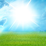 Green grass and blue sky Royalty Free Stock Photos