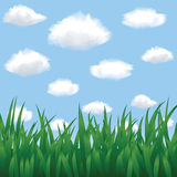 Green grass, blue sky and clouds Royalty Free Stock Images