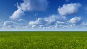 Green grass and blue sky daytime Royalty Free Stock Images