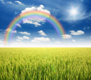 Green grass blue sky. Flower rainbow stock photos