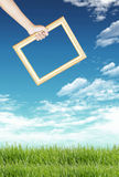 Green grass, blue sky and frame Royalty Free Stock Image