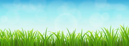 Green grass and blue sky. Fresh green grass and blue sky, vector illustration Stock Photo