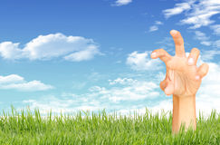 Green grass, blue sky and  hand Royalty Free Stock Photography