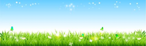 Green grass  blue sky Natural background. Field of fresh green grass palm, flower, and blue sky with stars.  illustration Royalty Free Stock Photography