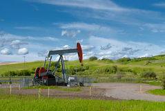 Green grass, blue sky, and pumpjack. Beautiful landscape with green grass, blue sky, and pumpjack. The photo was taken on sunny day of summer in Alberta, Canada Royalty Free Stock Photos