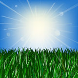 Green grass and blue sky. With sun and highlights Royalty Free Stock Image