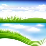 Green Grass And Blue Sky. Vector Stock Image