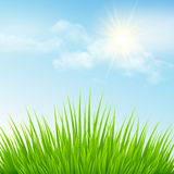 Green grass and blue sky. Vector illustration Stock Photos