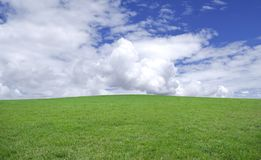 Green grass and blue sky. Stock Photos