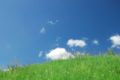 Green grass, the blue sky and white clouds stock image