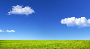 Green grass and blue sky. With white clouds Royalty Free Stock Photo