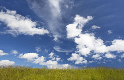 Green grass, blue sky and white clouds. Background. Royalty Free Stock Photo