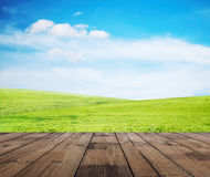Grass, sky and floor Royalty Free Stock Photos