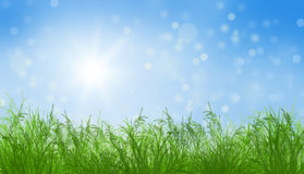 Green grass and blue sunny sky spring landscape. Perfect for backgrounds royalty free illustration