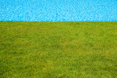 Green grass and blue water Stock Images