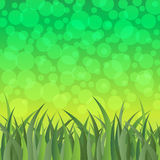 Green grass and bokeh light vector Royalty Free Stock Photography