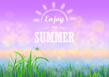 Green grass with bokeh sunset sky. Enjoy summer holidays text on the Floral nature summer spring background. Royalty Free Stock Images