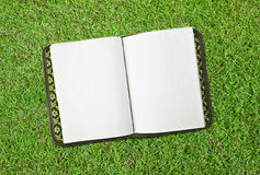 Green grass with book Royalty Free Stock Image