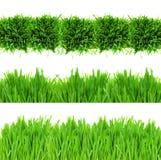 Green grass border Stock Photos