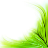 Green grass border background Royalty Free Stock Photography