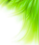 Green Grass Border Background Royalty Free Stock Photos