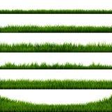 Green Grass Border Big Collection. Vector Illustration vector illustration