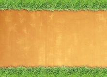 Green grass border on cement wall background Stock Images